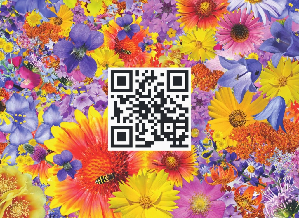 Embedded QR Code in Art