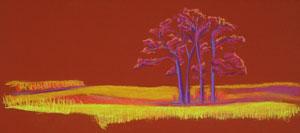 Four Trees, Bethany Gola